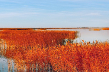 In de dag Rood traf. autumn landscape with lake