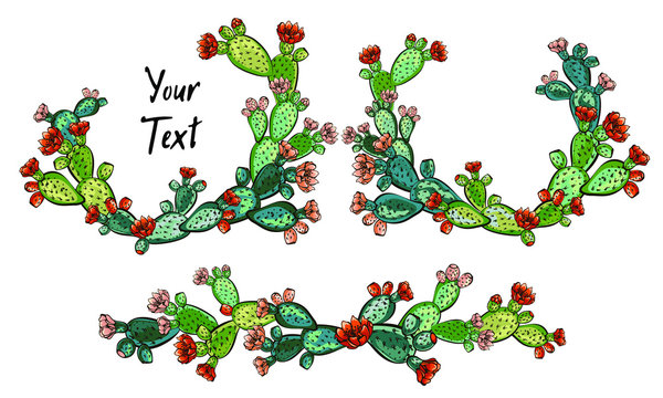 web banner template, Wreath of cacti with flowers, Decorative exotic plants  with text space, Place for your text or congratulations, Design for banner, greeting card, social networks, website.