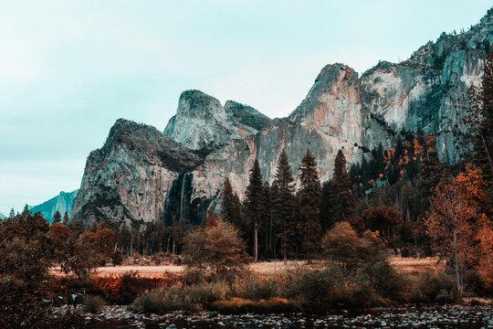 Yosemite / Tunnel View / El Capitan Meadow