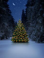 Wall Mural - Leuchtender Weihnachtsbaum im Schnee bei Nacht an Heiligabend