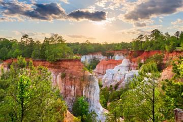 Fototapete - Providence Canyon in Southwest Georgia, USA.