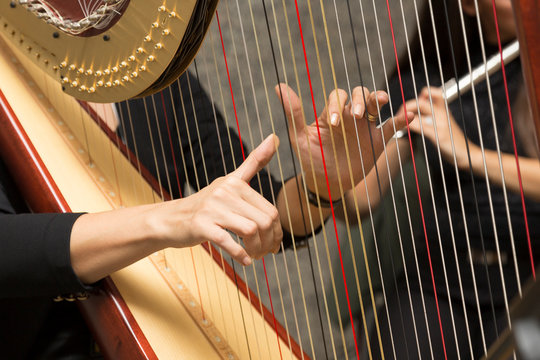 harp player female musician, hand detail