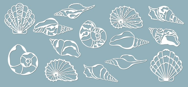Shells of the sea. Laser cutting. Craft paper for decoration. Plotter, screen printing.