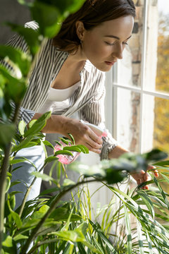 Female with a spray bottle spraying plants