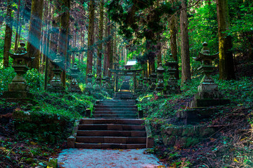 Photo sur Toile Lieu de culte shrine in the forest, Aso, Kumamoto