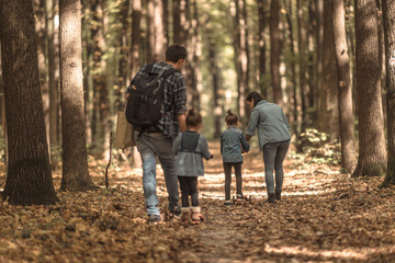 A young family walks in the autumn forest with children.
