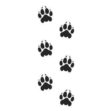 Tiger paw print. Silhouette. Isolated prints on white background