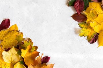 Dekoracja w formie ramki z liści na jasnym tle z miejscem na napis