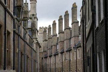 Rows of Medieval chimney stacks
