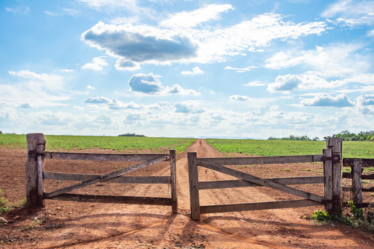 wooden fence in the field