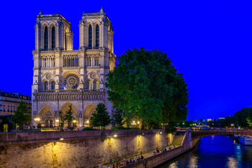 Wall Mural - Night view of Cathedral Notre Dame de Paris in Paris, France