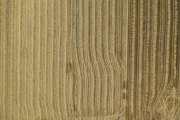 harvested rice fields, with the traces of the tractor wheels making forms