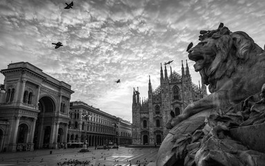 milano piazza duomo cathedral galleria and lion monument at sunrise cloudy sky black and white no people