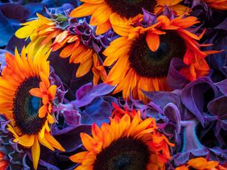 Farmers Market Organic Flowers