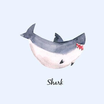 Cute vector watercolor baby shark illustration for children print