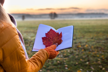 Autumn is writing a diary. Woman holding red leaf at open note pad. Sunrise over fog landscape. Autumn concept