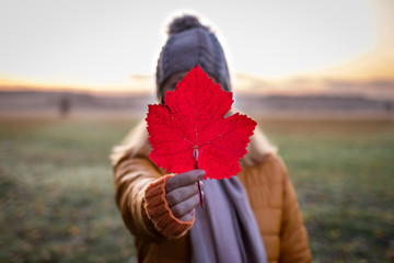 Woman holding red leaf before her face. Autumn misty morning outdoors