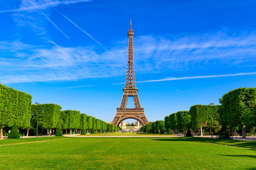 Wall Mural - Paris Eiffel Tower and Champ de Mars in Paris, France. Eiffel Tower is one of the most iconic landmarks in Paris. The Champ de Mars is a large public park in Paris.