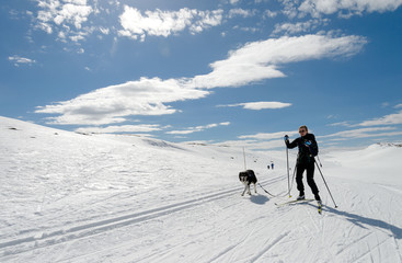 Girl easter time skiing in norwegian mountains with dog