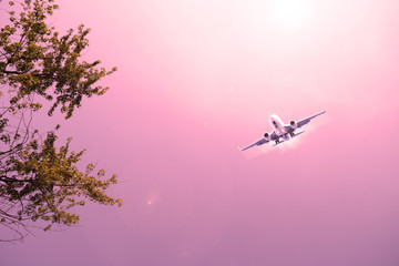 Airliner in the sky red over green foliage.