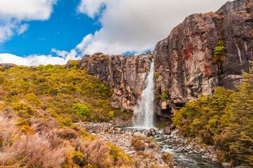 Fototapete - Taranaki Falls in The New Zealand