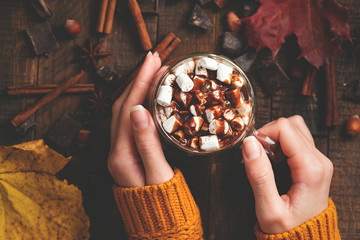 Hot Chocolate With Marshmallows And Chocolate Sauce In Female Hands On Wooden Background. Top View. Warm Cozy Drink For Autumn Or Winter Season. Comfort Food Concept
