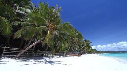 Fototapete - Coconut palm trees on white sandy seashore on tropical island. Travel destinations. Summer vacations