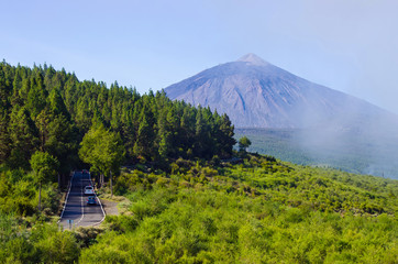 Volcano of Tenerife - view from with forest