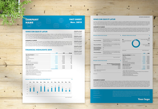 Flyer Layout with Blue Headers
