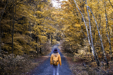 Hiking on woodland trail. Tourist woman on her journey in nature at autumn
