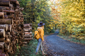 Tourist hiking in forest at autumn