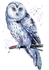 Wall Murals Owls cartoon Beautiful painting with a bird, watercolor illustration, white owl and paint splashes. Poster, postcard.