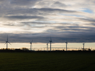 Silhouette of wind turbines or windmills creating electricity from wind power on field at sunset, Nordfriesland, Germany.