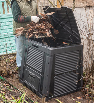 Filling the composter bin with fallen leaves