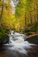 Ilsetal, Nationalpark Harz - Germany