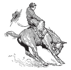 Bucking Bronco, vintage illustration.