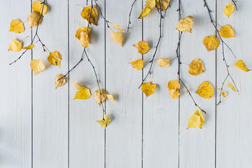 birch branches with yellow leaves  on white retro wood boards. background. Autumn, fall concept. Flat lay, top view. Wall mural
