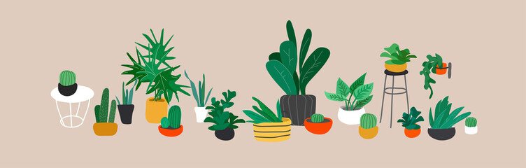 Potted plants collection. Urban jungle, trendy home decor with plants, cactus, tropical leaves. Set of house indoor plant vector hand drawn cartoon
