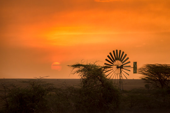 Sunset with a windmill silhouette at the forest edge