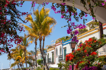 Colorful flowers blooming around houses and arches in Puerto de Mogán, Gran Canaria, Spain. It's...