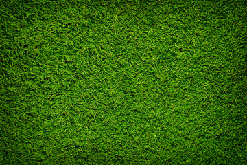Tuinposter Gras Artificial grass background , close up