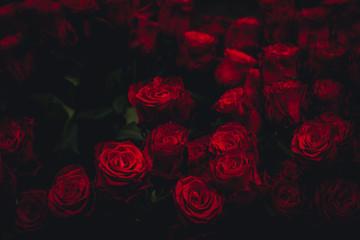 Dark Roses