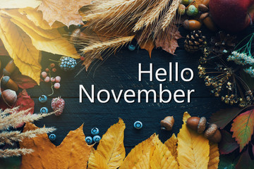 Foto auf AluDibond Schmetterlinge im Grunge Hello november. frame of autumn decor Poster card filter grunge image