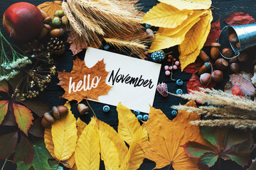 Fotorollo Schmetterlinge im Grunge Hello november. frame of autumn decor Poster card filter grunge image