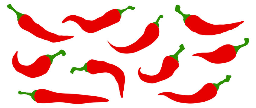 Set of chili hot peppers. Vector icon on white background.