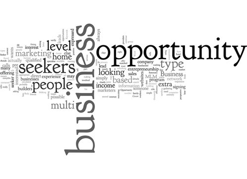 Are You A Business Opportunity Seeker