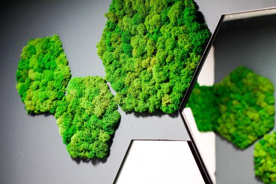 bathroom design with green moss