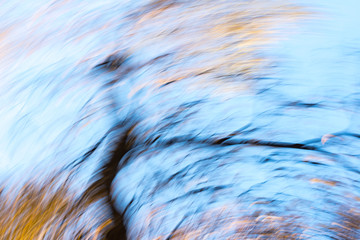 Photo sur Toile Les Textures abstract background of autumn sky and tree
