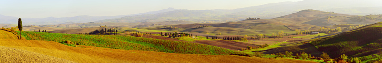 Papiers peints Toscane Wavy fields in Tuscany