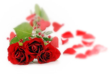 Valentine's Day background.  Flower  composition. Red roses and heart. White background with...